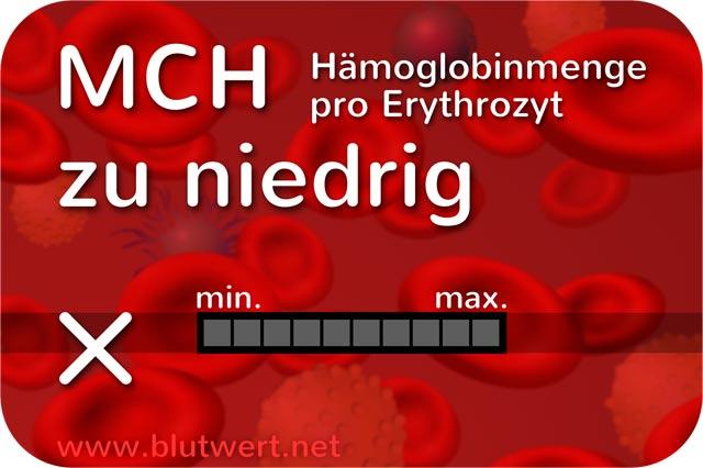 Blutwert Hgb